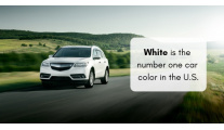 Everything You Need to Know About Color-Matching Auto Paint